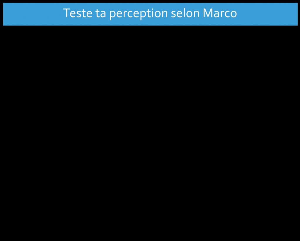TestetaperceptionMArco